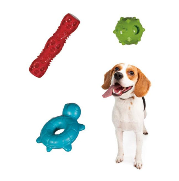 Squeaky Toy Lover's Pack