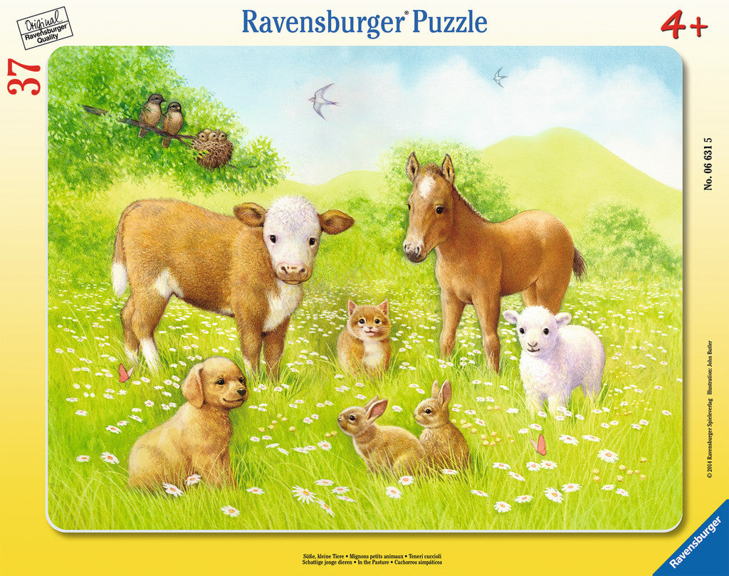 Ravensburger Children's Puzzles Frame Puzzles - In the Pasture (37 pc Puzzle) 6631