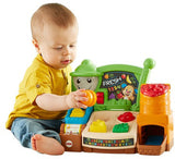 Fisher Price Laugh & Learn Fruits & Fun Learning Market DWW11
