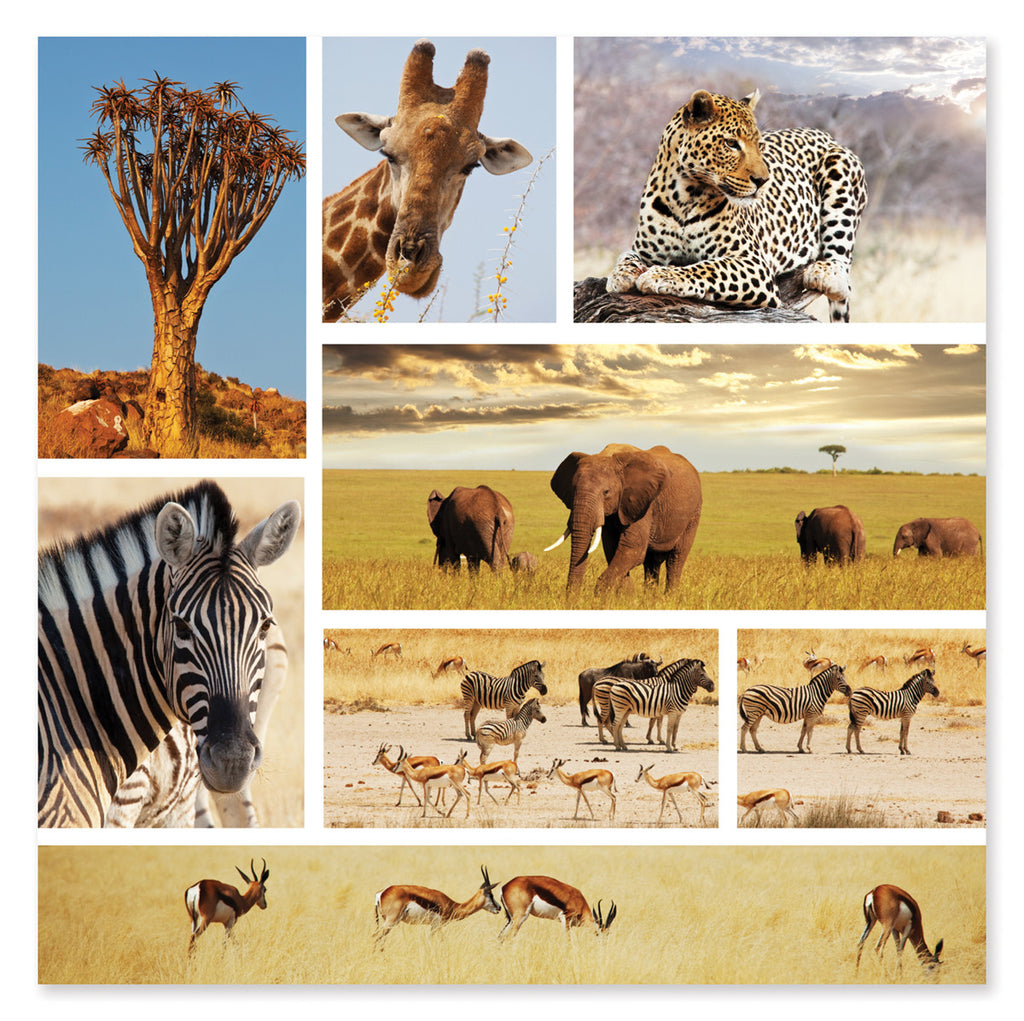 Safari Shapshots Cardboard Jigsaw - 1000 Pieces 9099