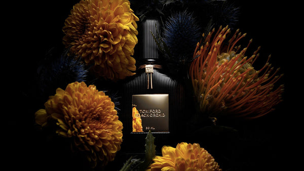 TOM FORD Velvet Orchid vs. Black Orchid: What's the Difference? | My Perfume Shop