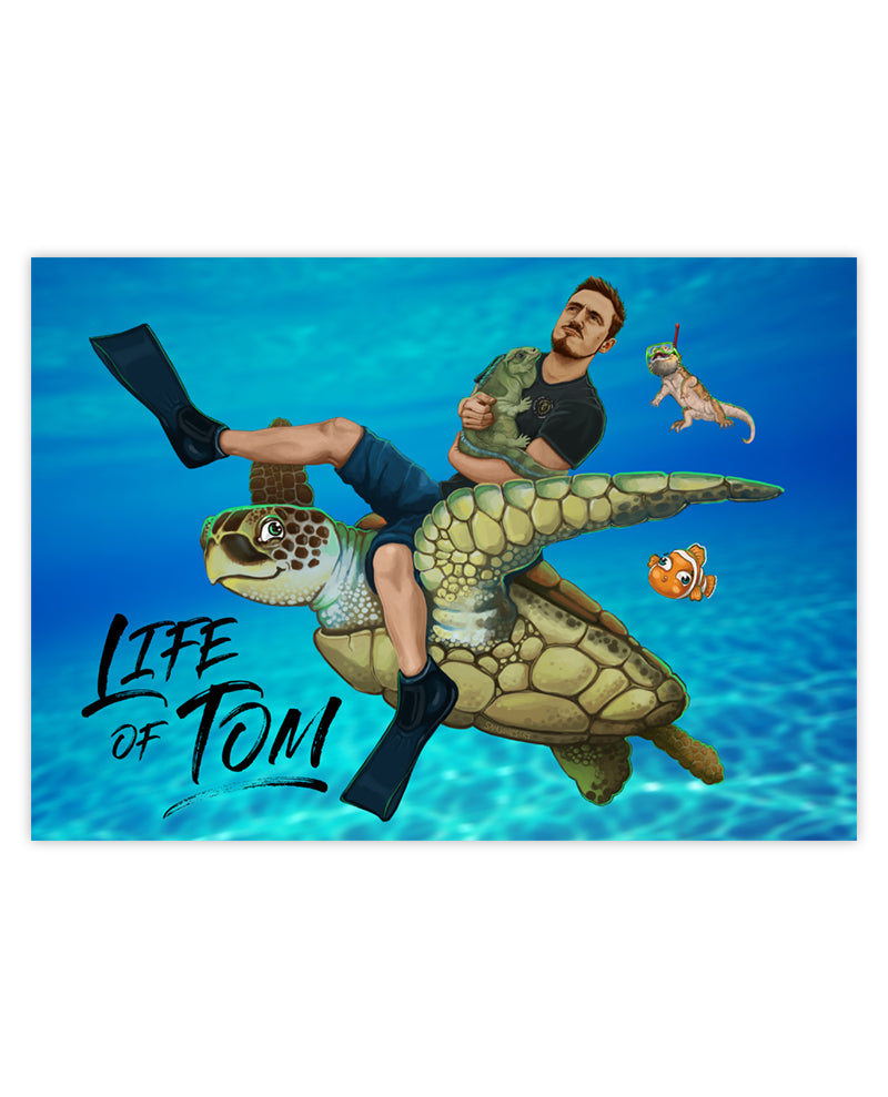 Turtle Tom Poster