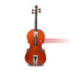 Acoustic 4 Strings Professional Violin