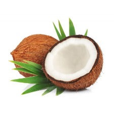 Brown Coconut 1Piece