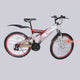 Kampala Rainbow Red Dual Sport Adult Bicycle