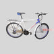 Kampala Youth/Adult Bicycle | Size 26