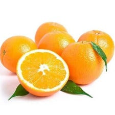 Novel Oranges (6 pcs)