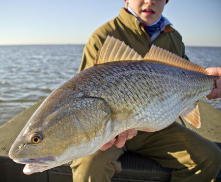 Brock with another huge redfish!