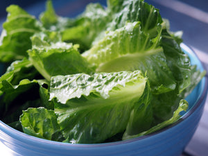 Chopped Romaine - 2lb. | Ready, Set, Serve