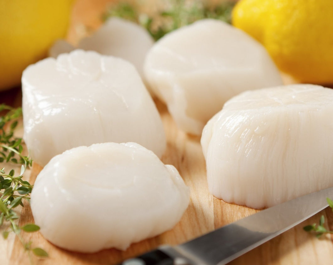 Raw Scallops - 10/20ct., 5lbs