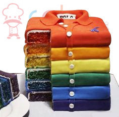 CSDSE079 - Rainbow shirts