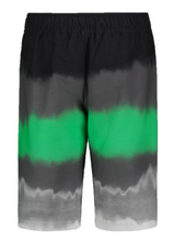 Load image into Gallery viewer, Ombre Gradient Board Shorts