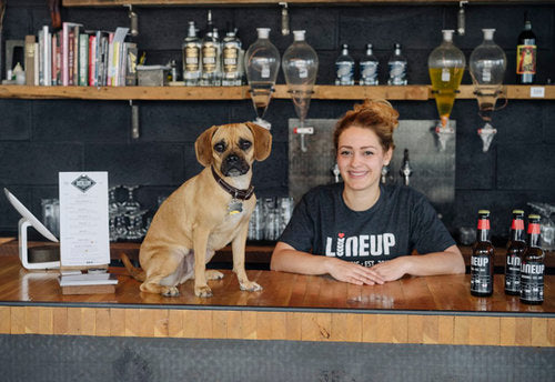 Women in the craft beer brewing industry