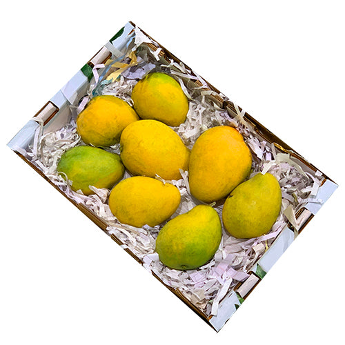 Indian Badami Mangoes Fresh