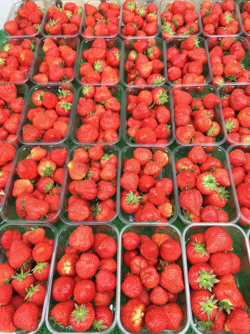 Strawberries 400gm Punnet (British)