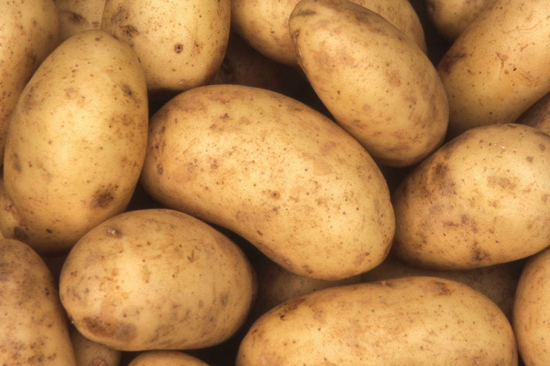 Washed Potatoes 25kg