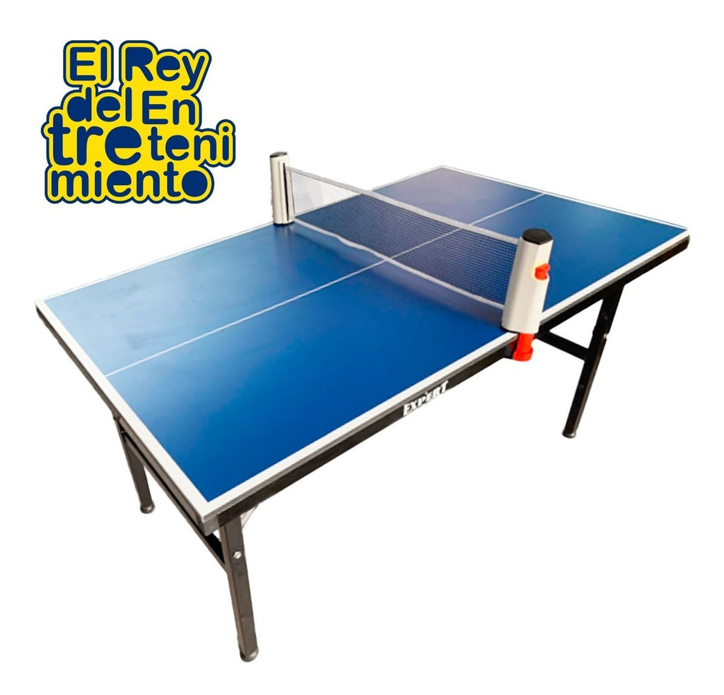 Mini Mesa De Ping Pong Reforzada + Red + Regalos (4973561806987)