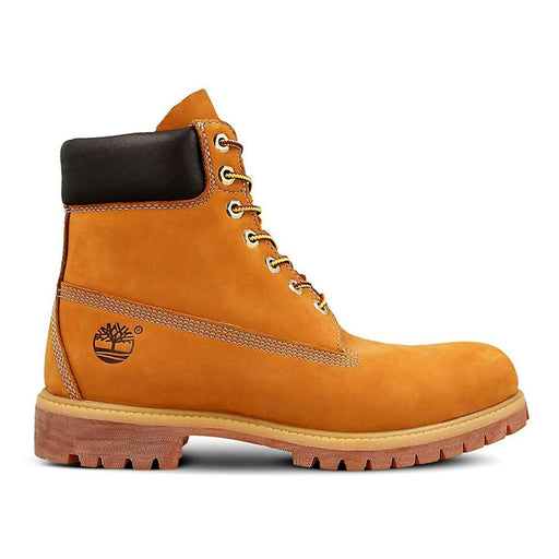 Men's boots Timberland 6 IN Camel - Shoppersbase