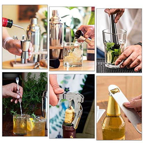 Bar Set,18-Piece Stainless Steel Cocktail Shaker Bar Tools,with Rotating Display Stand and Recipes Booklet,Premium Bartending Kit for Home,Bars,Traveling and Outdoor Parties - Shoppersbase