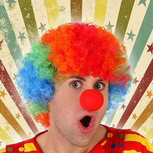 Wigs Male clown Multicolour 118088 - Shoppersbase