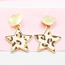 Load image into Gallery viewer, Star Fashion Earrings