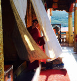 Young Bhutan monk peering out of curtains of monastery