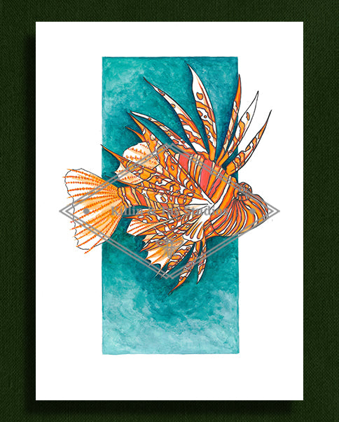Original Lion Fish Ink and Watercolour Painting