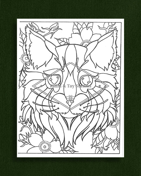 Creatures in Colour: Cat Colouring Page