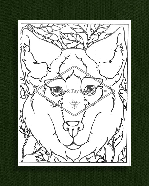 Creatures in Colour: Wolf Colouring Page
