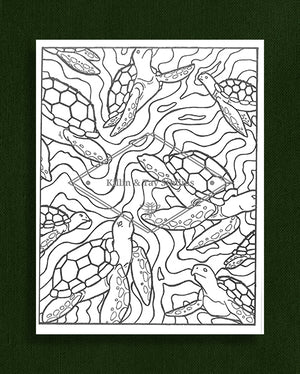 Creatures in Colour: Turtles Colouring Page