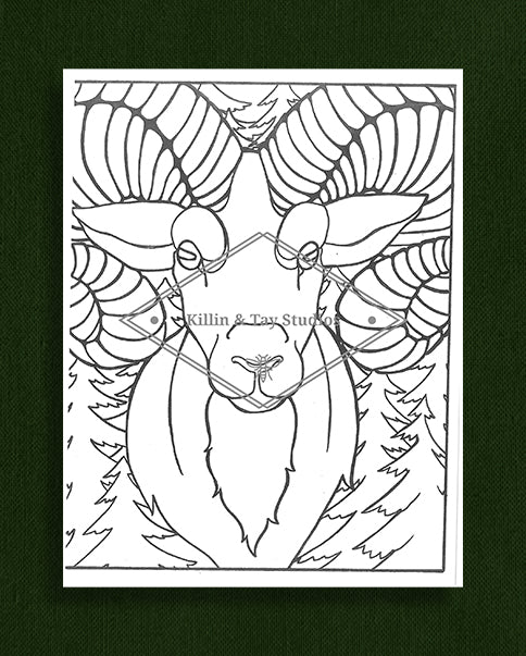 Creatures in Colour: Ram Colouring Page