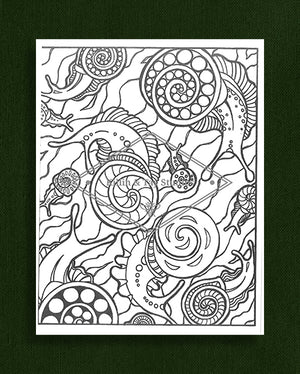 Creatures in Colour: Snail Colouring Page