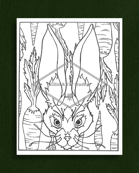 Creatures in Colour: Rabbit Colouring Page