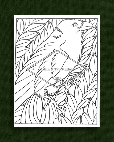 Creatures in Colour: Raven and Leaves Colouring Page