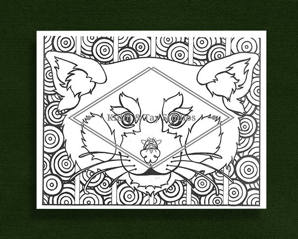 Creatures in Colour: Red Panda Colouring Page