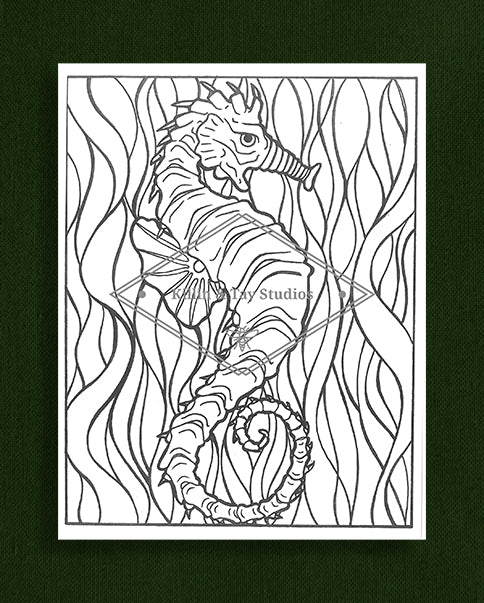 Creatures in Colour: Seahorse Colouring Page