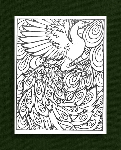 Creatures in Colour: Peacock Colouring Page