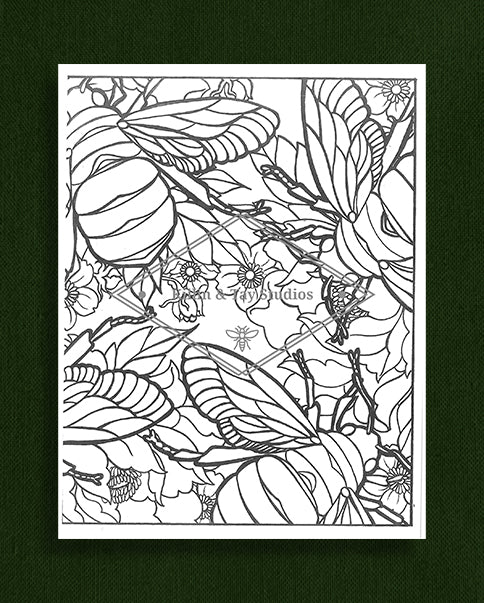 Creatures in Colour: Bee Colouring Page
