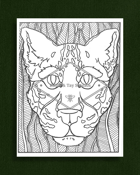 Creatures in Colour: Leopard Colouring Page