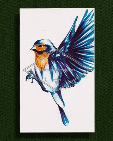 Bird Colour Print