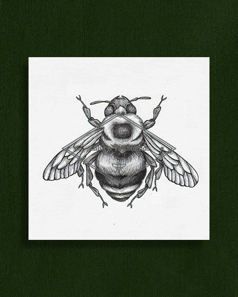Bee Original Ink Illustration