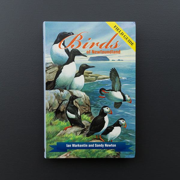 Birds of Newfoundland