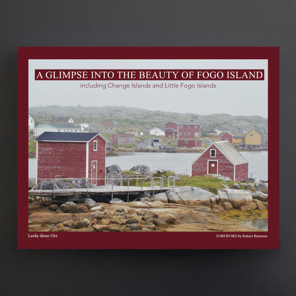 A Glimpse Into the Beauty of Fogo Island