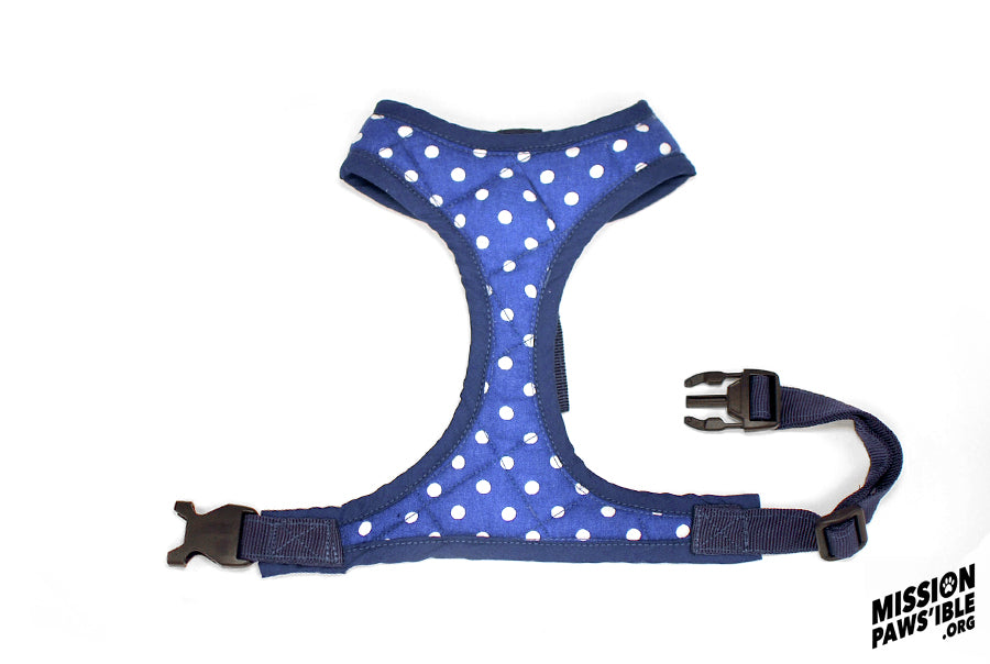 Polka Face Blue Harness
