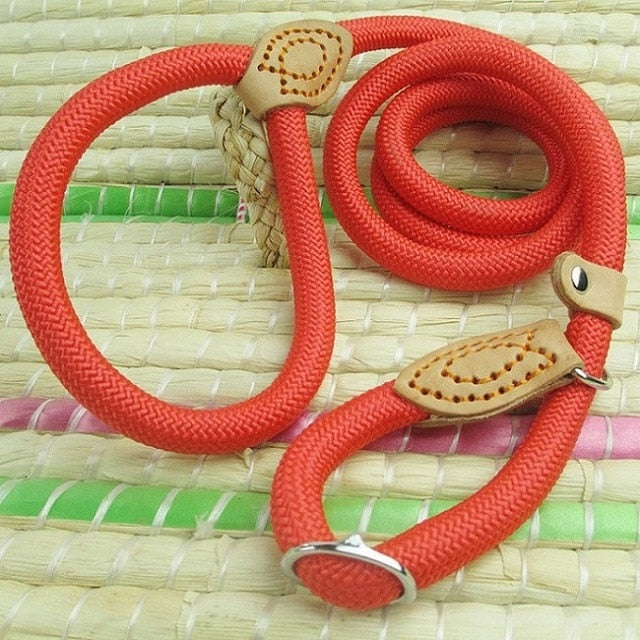 Pet Chain Lash Slip Collar