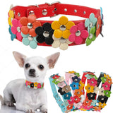 Pet PU Leather Collar