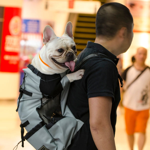 Adjustable Pets Hiking Backpack