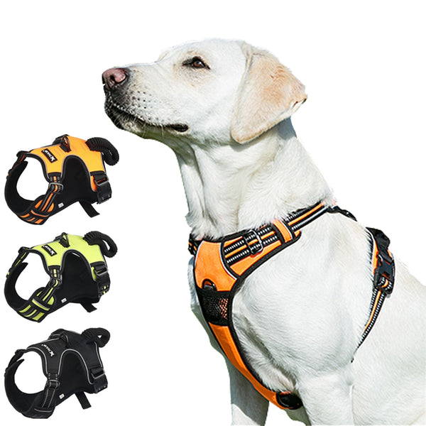 Reflective Dog Tailup Harness