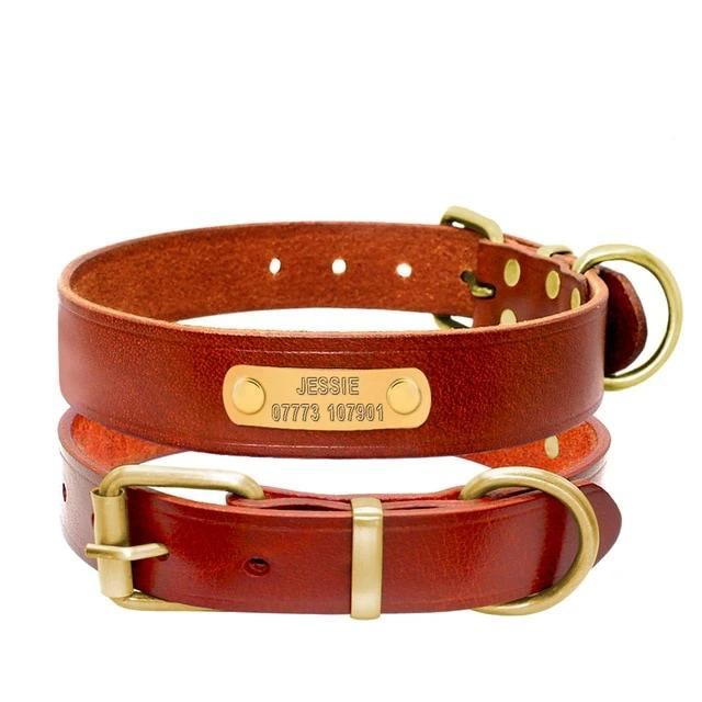 Pet Genuine Leather Collar
