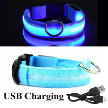 Load image into Gallery viewer, Pet USB Rechargeable Collar